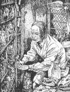 Herbalista Mago Tradicional por Russ Nicholson
