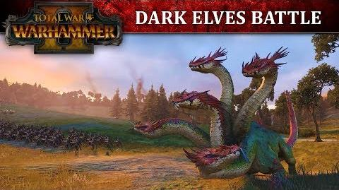 Total War WARHAMMER 2 - Dark Elves Battle Let's Play