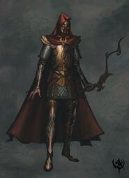 Warhammer age of reckoning Imagen Guerrero Sombrio Altos Elfos 01