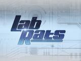 Lab Rats Season 5