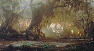 The Enchanted Forest.png