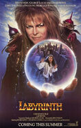 Labyrinth Advance