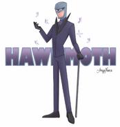 Hawk Moth Nasca Drawing