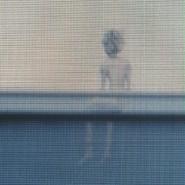 Cat Blanc Production Screenshot