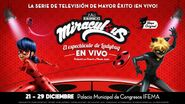 The Miraculous Ladybug Show (2)