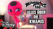 MIRACULOUS - Alles über die Kwamis Disney Channel 🐞🐱