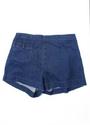 18th Amendment - Bogan shorts