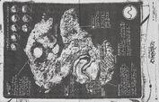 Chromatica Trifold LP fanzine 009
