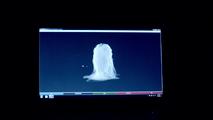Intel x Haus of Gaga 003