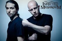 Infected Mushroom.jpg