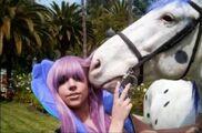 Paparazzi (Horse Scene 2)