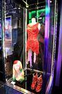 Haus Vegas - 2010 Meat Dress