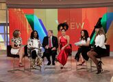 11-26-14 The View 001