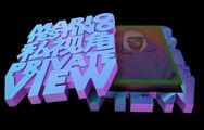 Mario Testino Private View Book Limited Edition Cover 03