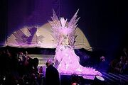Lady Gaga Living Dress Liverpool Monster Ball 2-24-10 photo 15