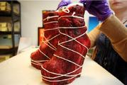 Meat dress 3
