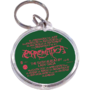 Chromatica Keychain 001