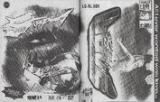 Chromatica Trifold LP fanzine 006