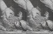 Chromatica Trifold LP fanzine 003