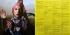 Chromatica Trifold LP booklet 011