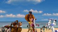 Madagascar wedding