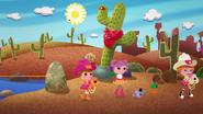 LTV Desierto