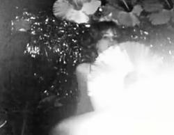 Mermaid motel video.png