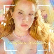 WildflowerWildfireSingle