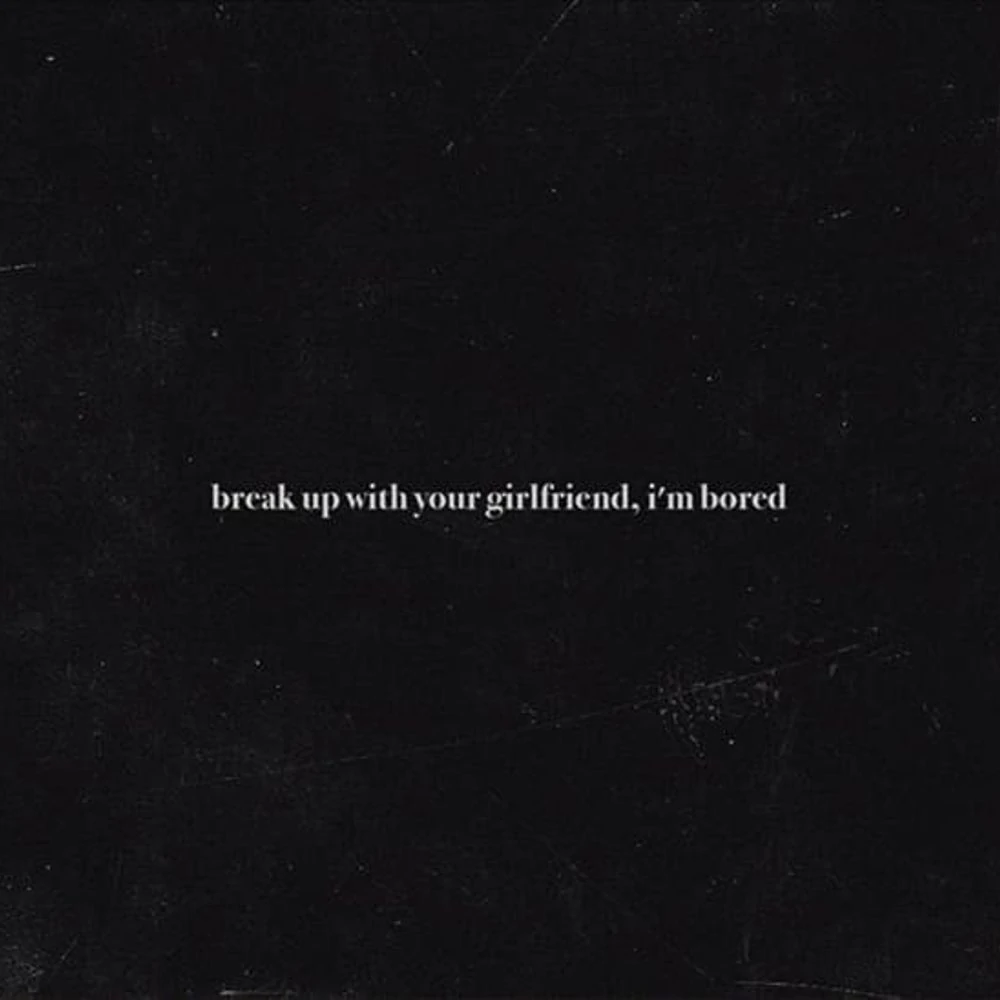 Break Up with Your Girlfriend, I'm Bored (song)