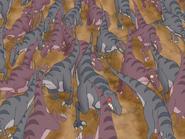 Crapton of raptors