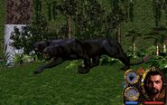 602339-lands-of-lore-guardians-of-destiny-screenshot