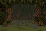 Swamp Pit