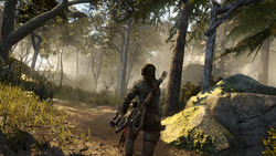 Lara in Forest.png