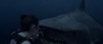 Shark-Punch