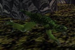 Lizardcreature.jpg
