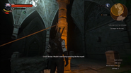 The Witcher 3 - Tomb Raider Easter Egg 3