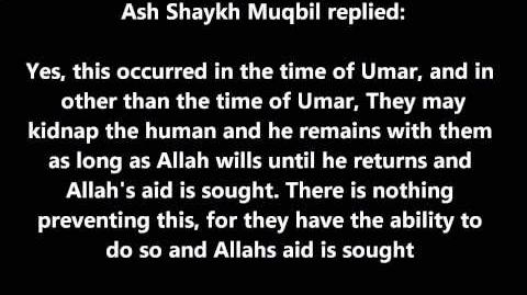 Shaykh_Muqbil_Can_the_Jinn_kidnap_Humans?-0