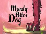 Mandy Muerde a Perro