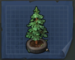 Plano Picea.png