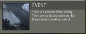 Crashed palin