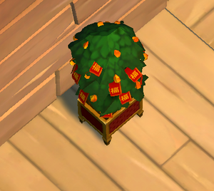 Houseplant chinese new year event