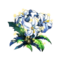 The Flower of Falnia.png