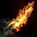 FirebrandIcon.png