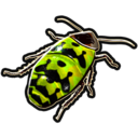Insects icon.png