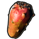 Huge Cactus Fruit icon.png