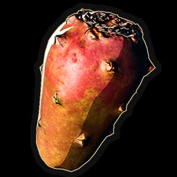 Huge Cactus Fruit Last Oasis Wiki