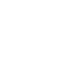 Mongoose Team Last Origin International Wiki Fandom