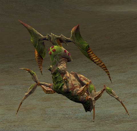 Jagd Beetle