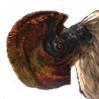 VultureFamilyIco.png