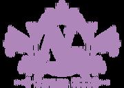 Team n logo.png